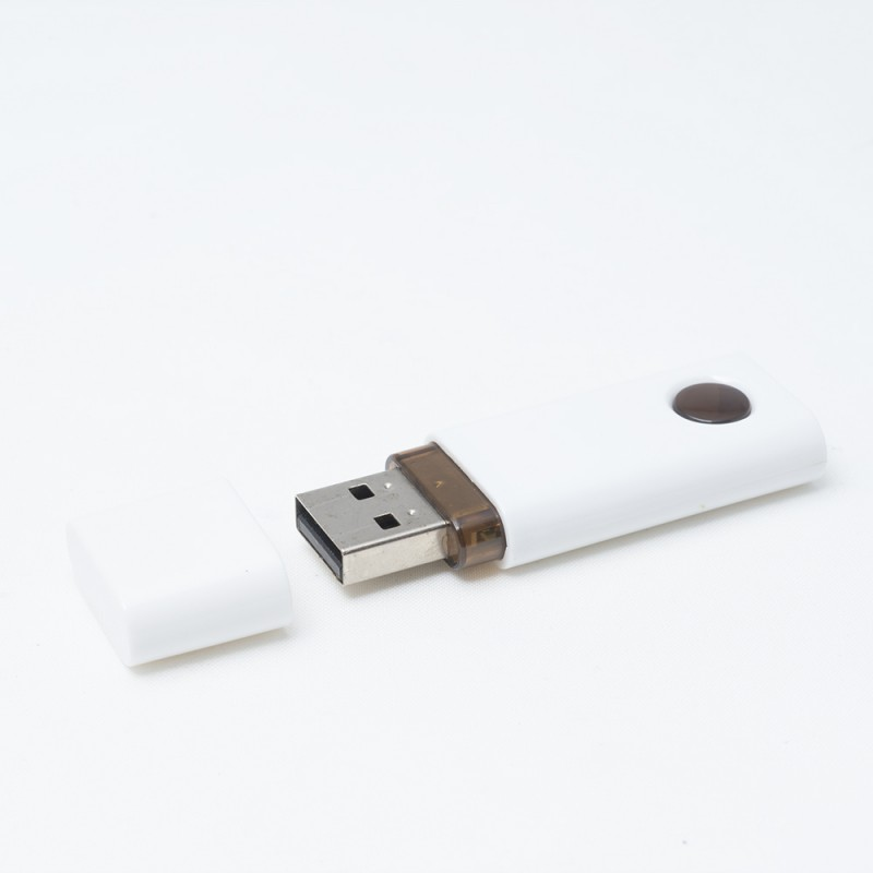 USB Flash Drive Austin