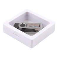 Plastic Window USB Box (small)